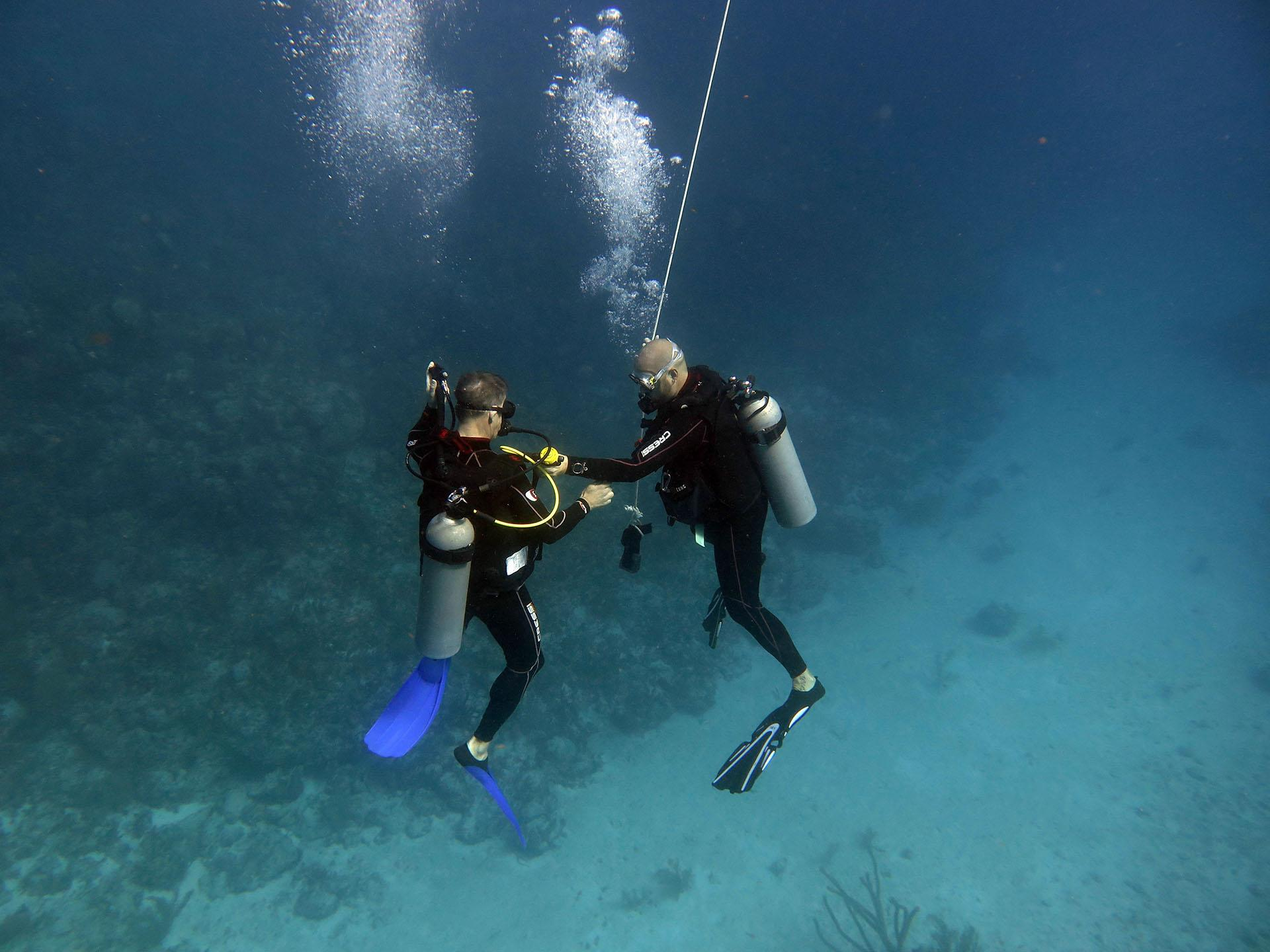 First aid, stress and rescue diving in Playa del Carmen
