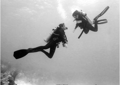 © Nina Moysi Photography _PV_pura-vida-diving-playa-del-carmen015