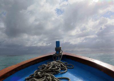 © Nina Moysi Photography pura-vida-diving-playa-del-carmen-riviera-maya-cozumel-mexico-buceo-mejor-padi013