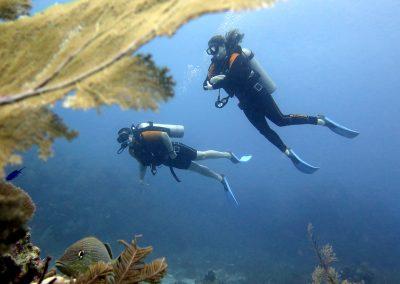 © Nina Moysi Photography pura-vida-diving-playa-del-carmen-riviera-maya-cozumel-mexico-buceo-mejor-padi017